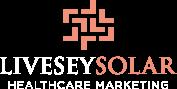 LiveseySolar Academy Logo